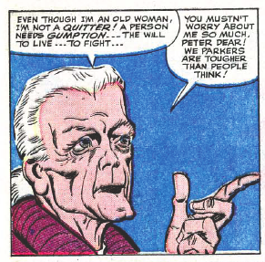 Image result for ditko aunt may gumption