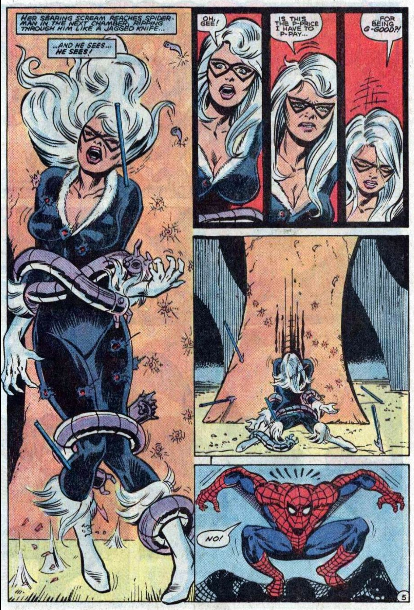black cat vs spiderman: