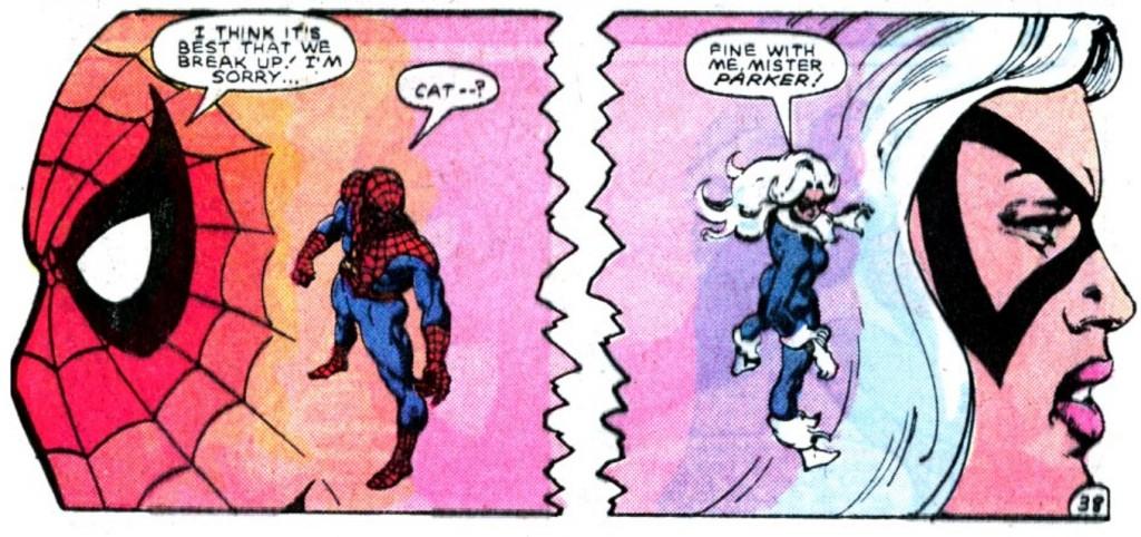 SpiderCat_05