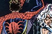SpiderCat_banner