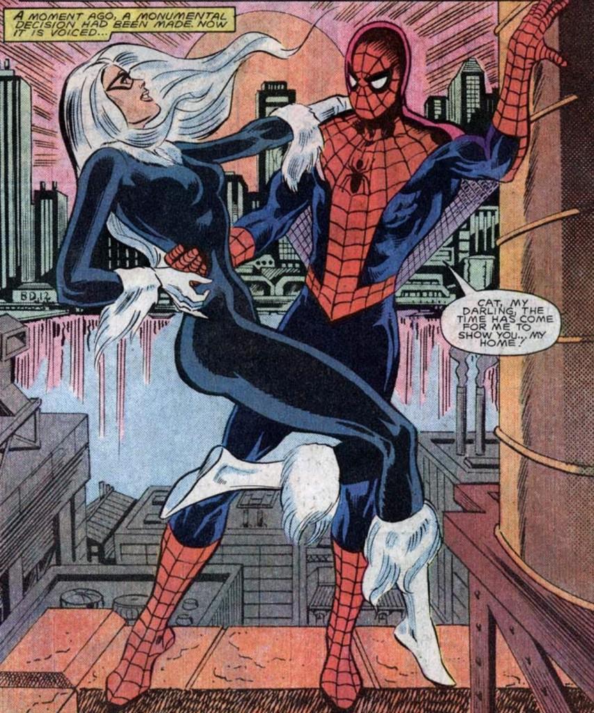 SpiderCat_02