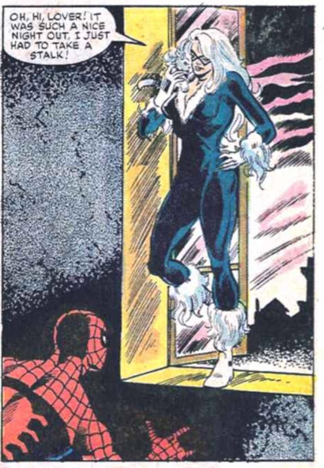 SpiderCat_10